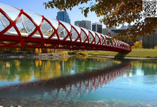 calgary-population-grows-real-estate-must-remain-affordable